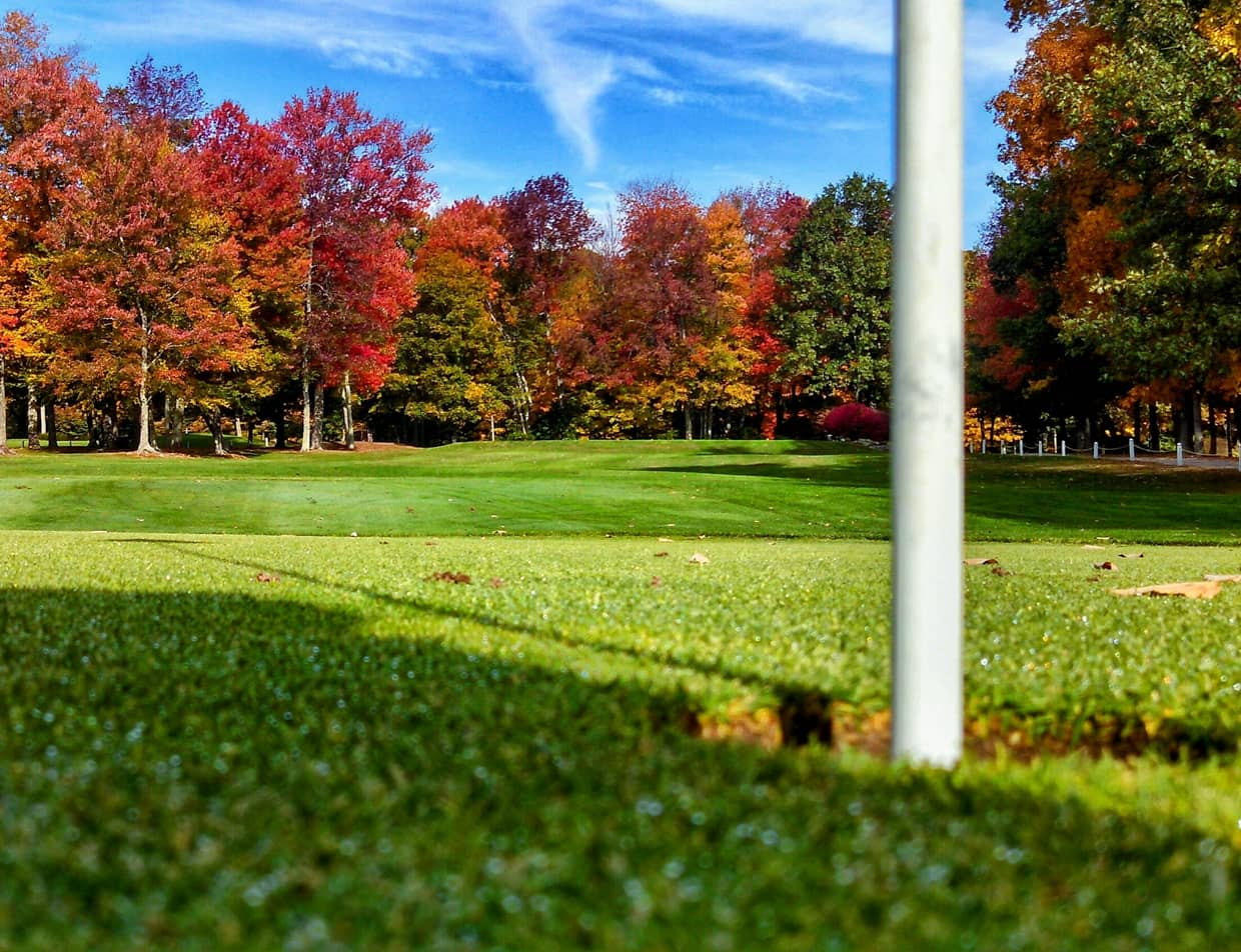 Golf green in new england